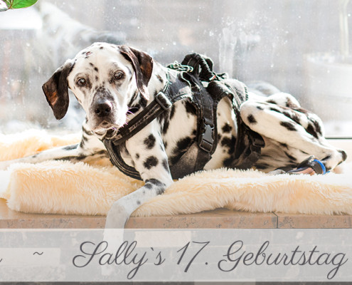 2015-Inka Englisch Fotografie-My-Life-Sally