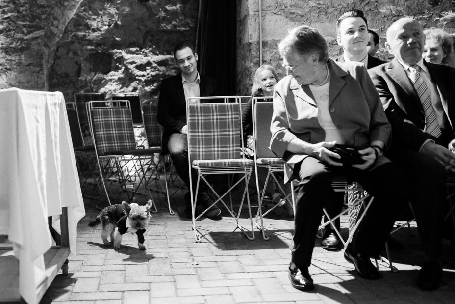 Hochzeitsfotografie Kassel-Sababurg-Urwald-2015-Inka Englisch Photography_16
