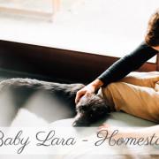 Babyfotograf Kassel Neugeborenenshooting Babyshooting Neugeborenenfoto Homestory Fotograf Kassel Frankfurt Göttingen Familienshooting zuhause Hund