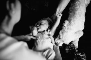 Babyshooting Kassel Baunatal Nordhessen Schwalm-Eder-Kreis Fotograf Baby Neugeborenes Homestory zuhause Newborn Fotograf 2020 Hund